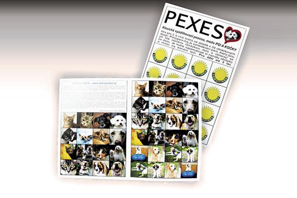 Pexeso pro dobrou věc - Dobročinná organizace Domovínek Plzeň