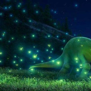 AKCE - letní Filmové noci